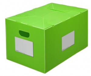 Packaways green classic plastic storage box